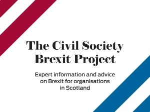 Coloured lines with the text The Civil Society rexit Protect: Expert information and advice on Brexit for organisations in Scotland